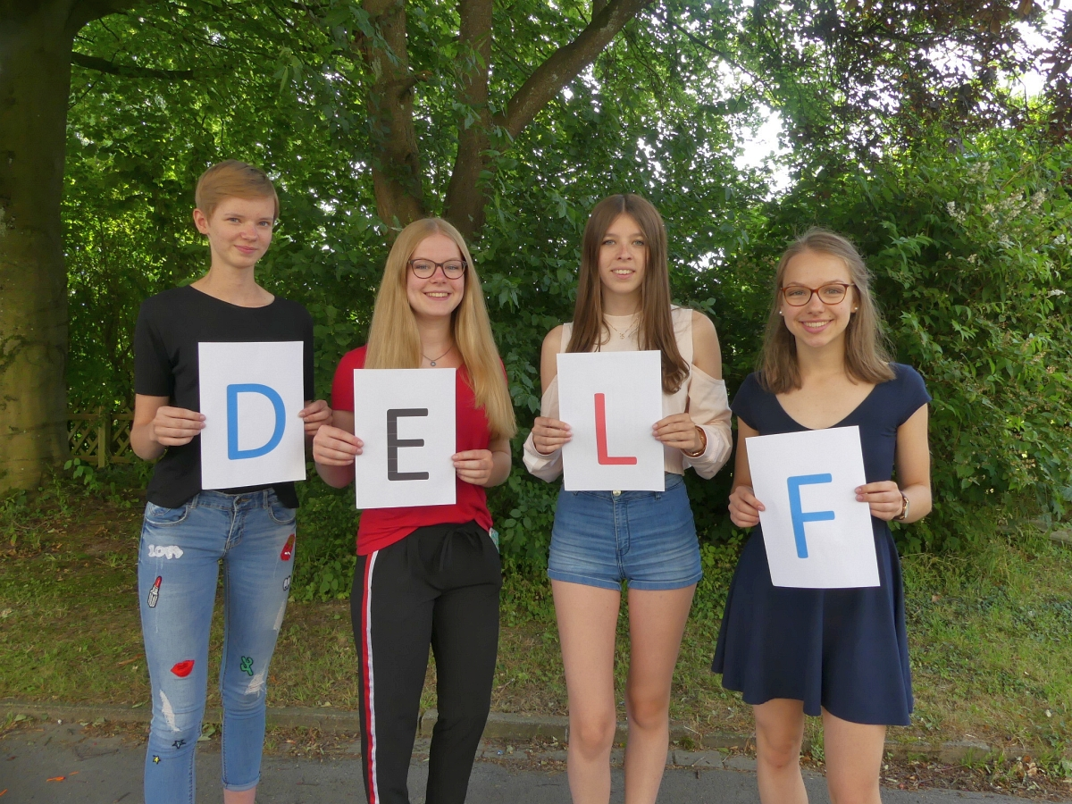Read more about the article DELF